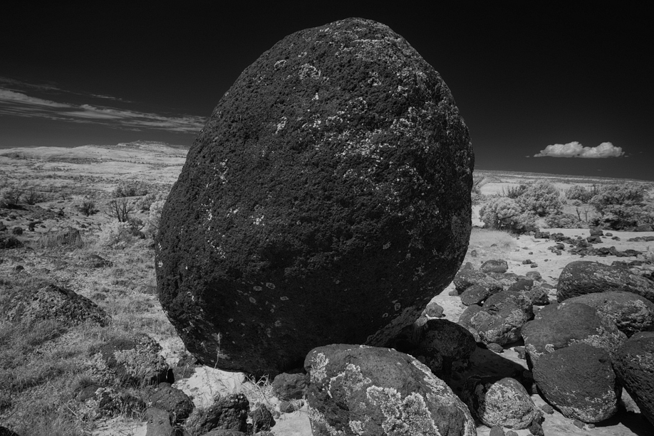 To Be a Rock